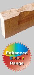 CWG Solidor Cutaway
